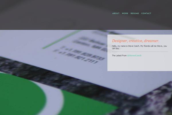 steve czechk portfolio website design