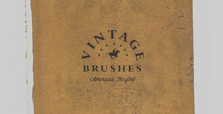 Vintage Thrift Store Brushes