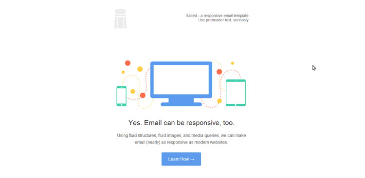 responsive Salted email template free barebones