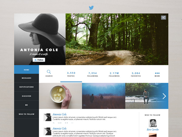 Twitter Layout Redesign by Estie Carrillo