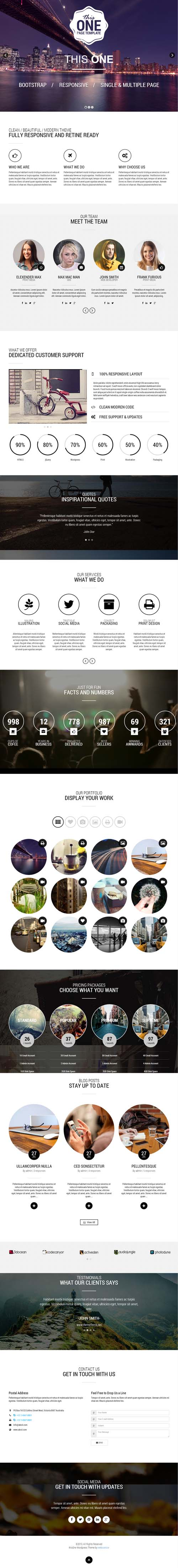 This One - One Page Responsive WordPress Theme