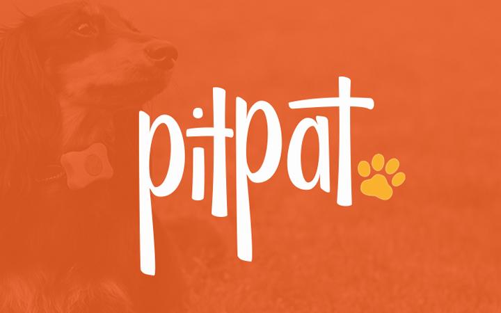 pitpat logo branding typography design
