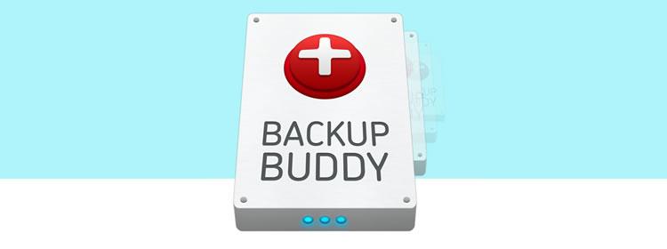 Backup Buddy wordpress plugins