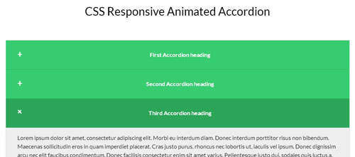 CSS Responsive Animated According