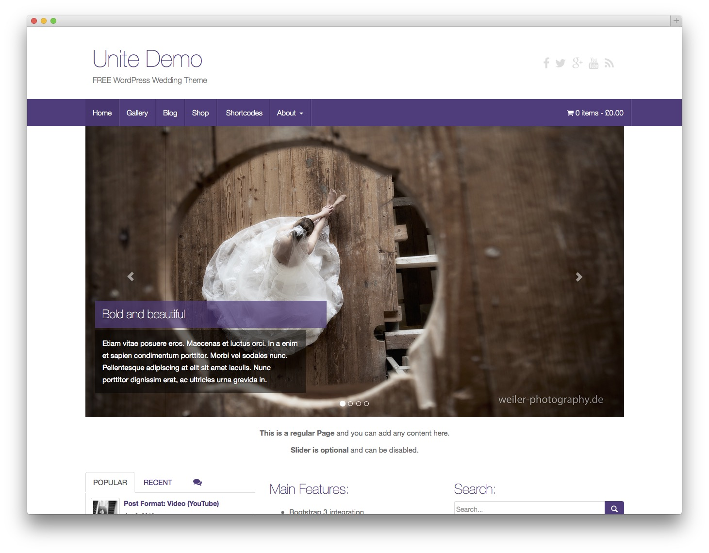 20 Best Free Bootstrap WordPress Themes - iDevie