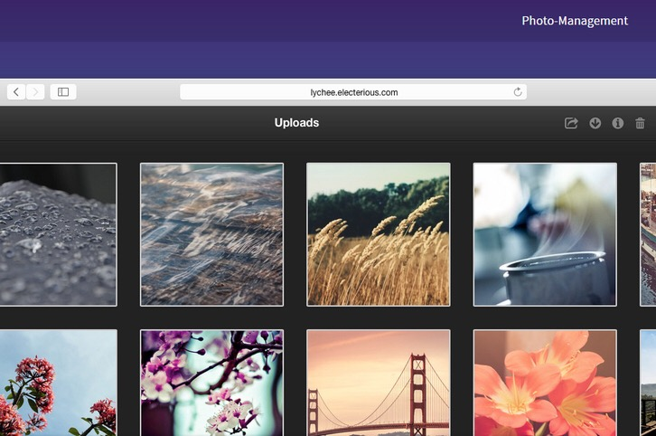 Lychee – A Free Photo Management Tool