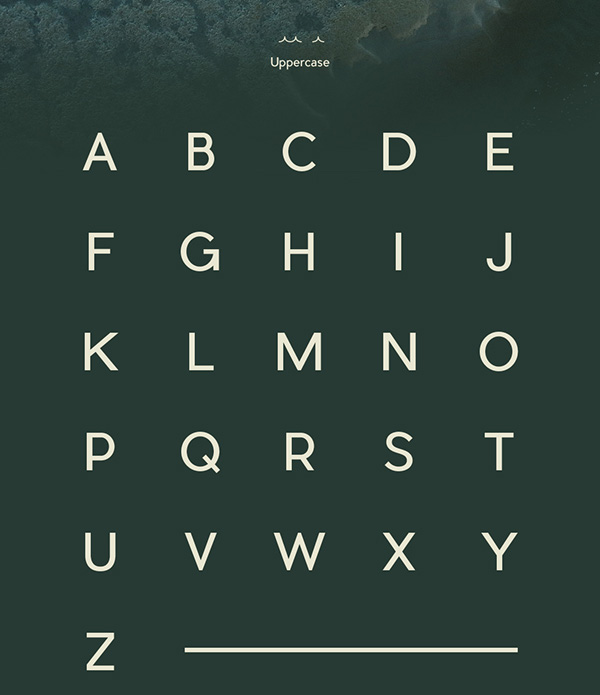 2.Free Font Of The Day  Pier