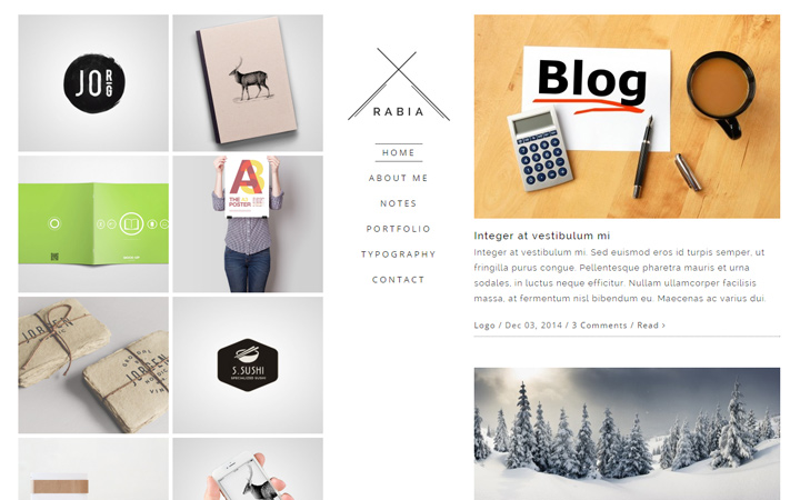rabia minimalist wordpress portfolio