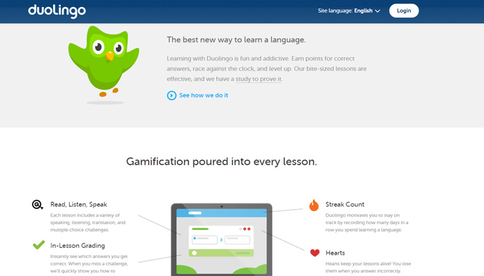 duolingo website design blue icons
