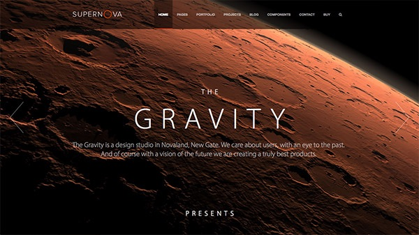 Web Designs of the Best Selling WordPress Themes