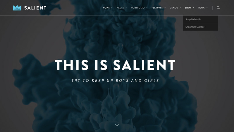 Salient is a responsive and retina ready WordPress theme with unlimited customising possibilities that will look stunning on any size device.