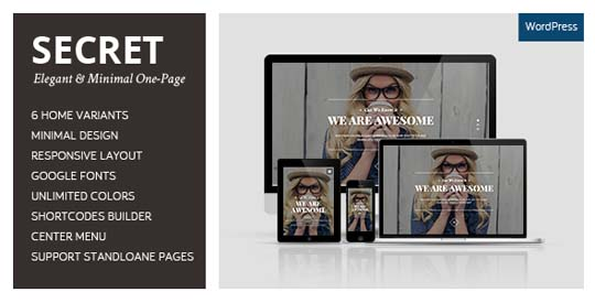 32.best-minimal-wordpress-themes