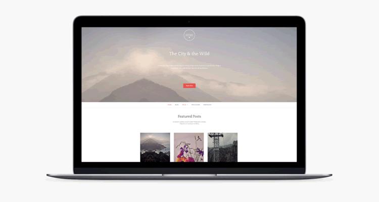 Gateway classy theme customizable home content free
