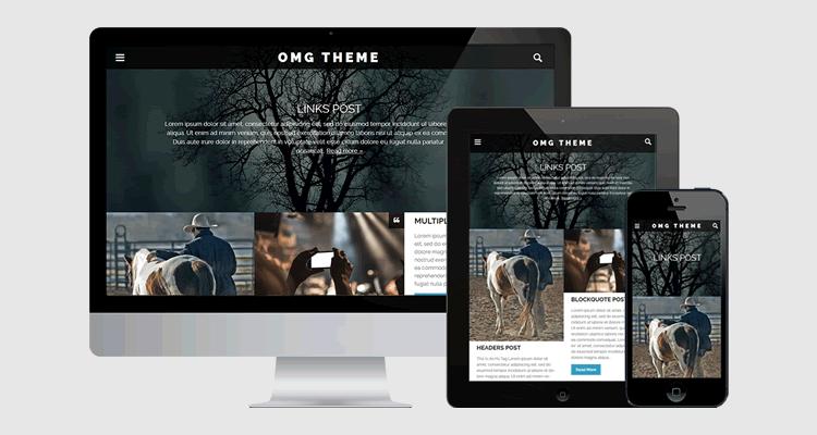 OMG bold full-width theme designed bloggers