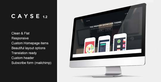 14.wordpress landing page theme
