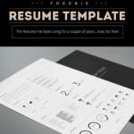 14 Free Simple Resume PSD Mockups & Templates