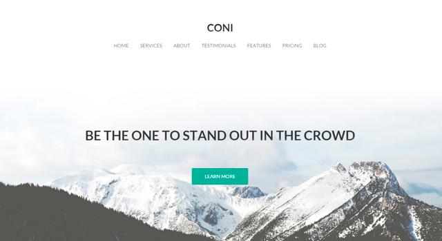Coni: Multipurpose Clean WordPress Theme