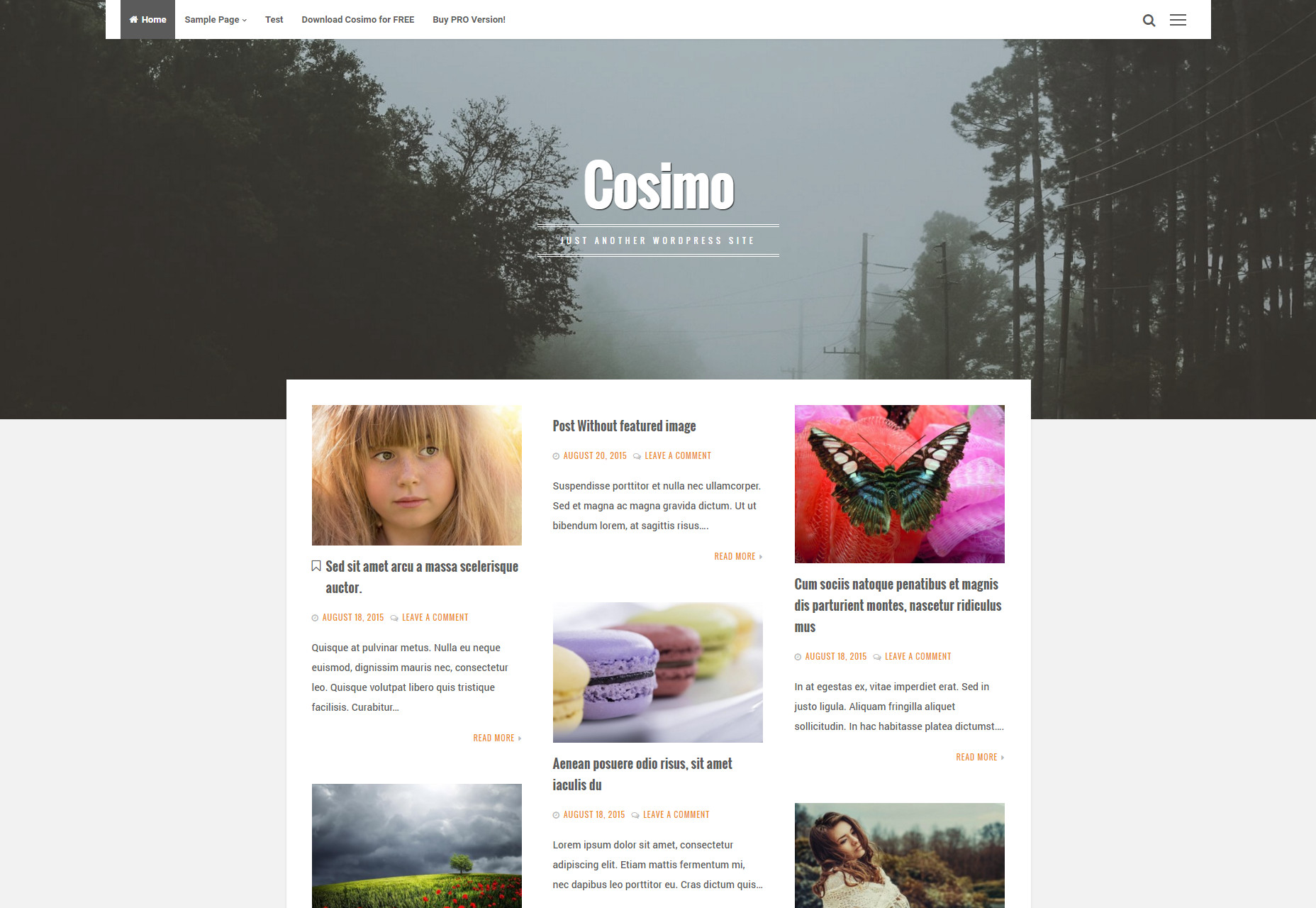 Cosimo: Blog & Portfolio WordPress Theme