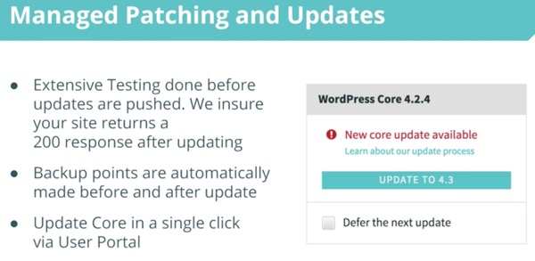 WP Engine Managed Updates