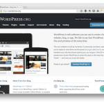 How to Install WordPress: The Application