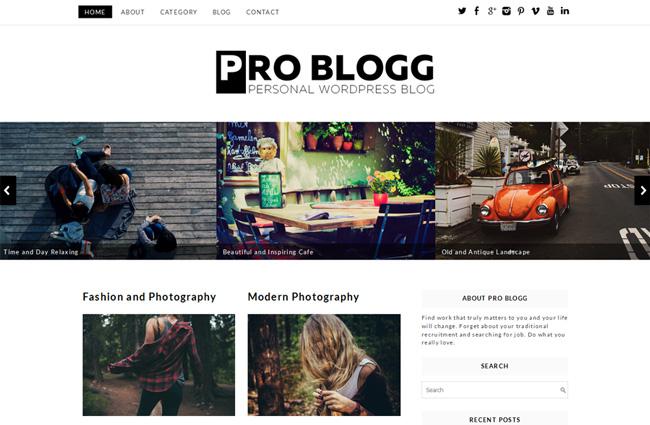 Pro-Blogg