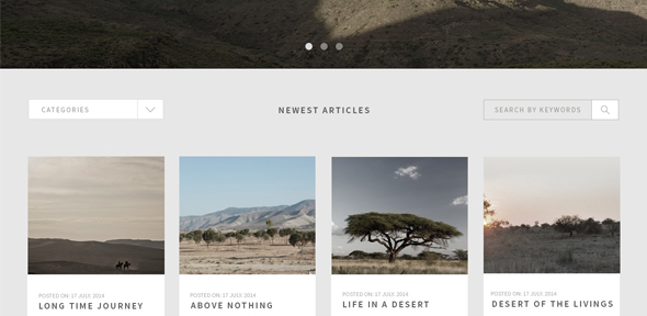 Traveler-Responsive-Blog-Theme