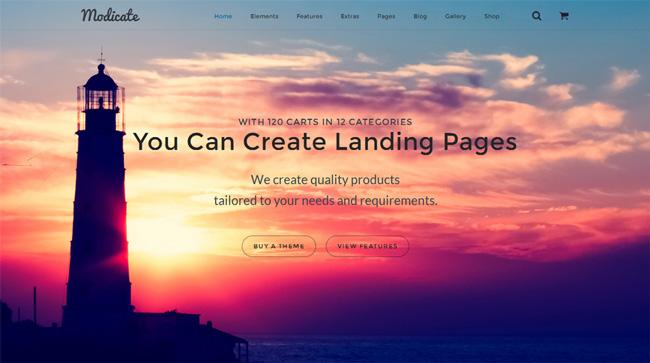 modicate-multipurpose-website-template