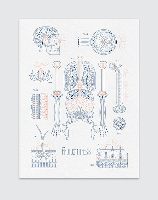Essie Letterpress 2015 Almanac