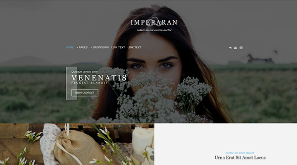 12. Imperaran Free Website Template