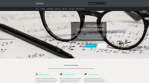 13. Pleeness Free Website Template