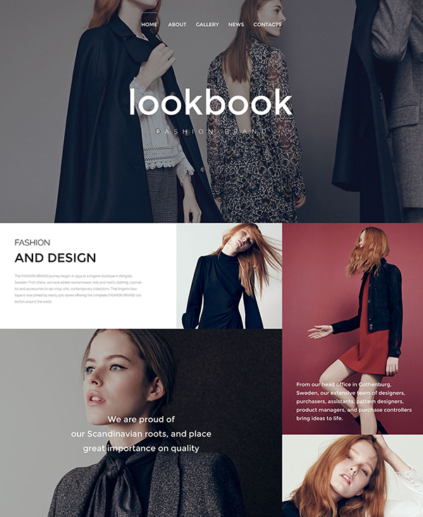 49. 1 fashion html5 website template