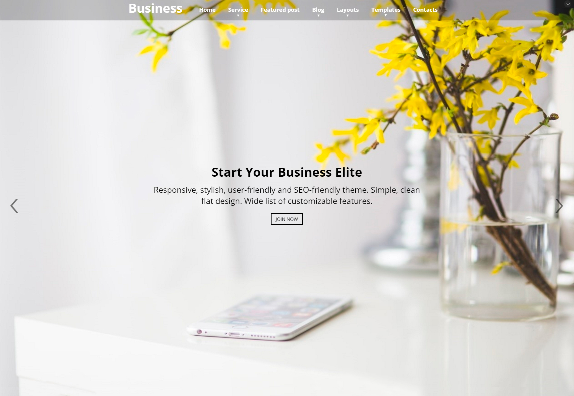 Business Elite: Clean Parallax WordPress Theme