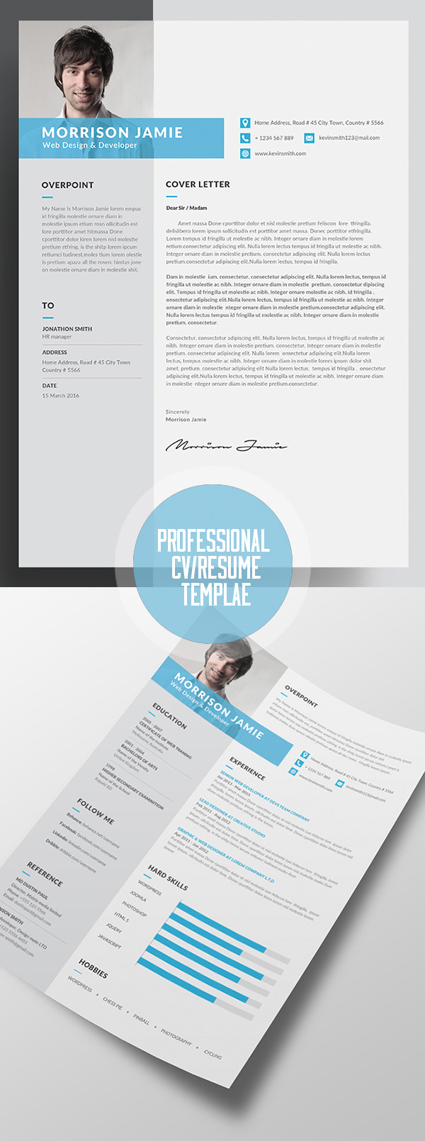 Professional Cv  Resume Templates And Cover Letter  Idevie