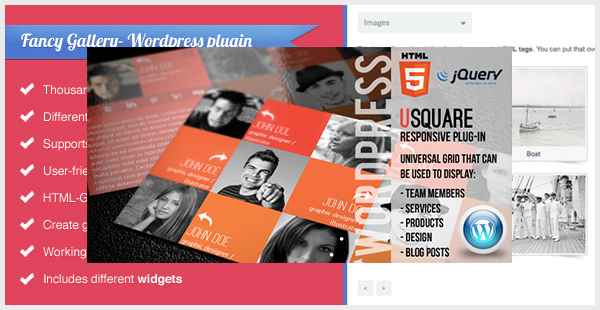 uSquare - Universal Responsive WordPress Grid for Team Members Logos Portfolio Products and More