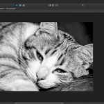 Affinity Photo comes to Windows