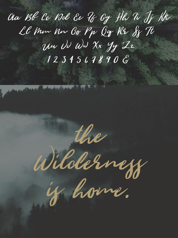 Wild Youth Font & Letters