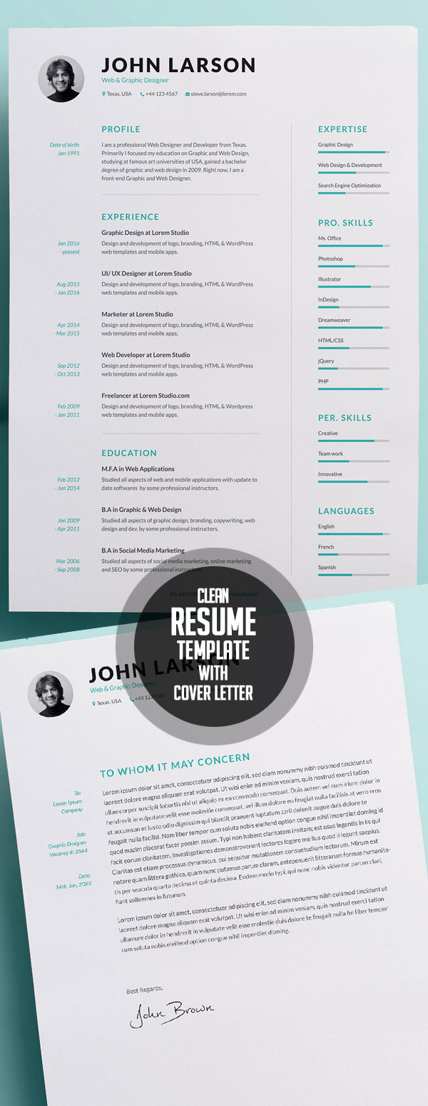 50 Best Minimal Resume Templates - iDevie