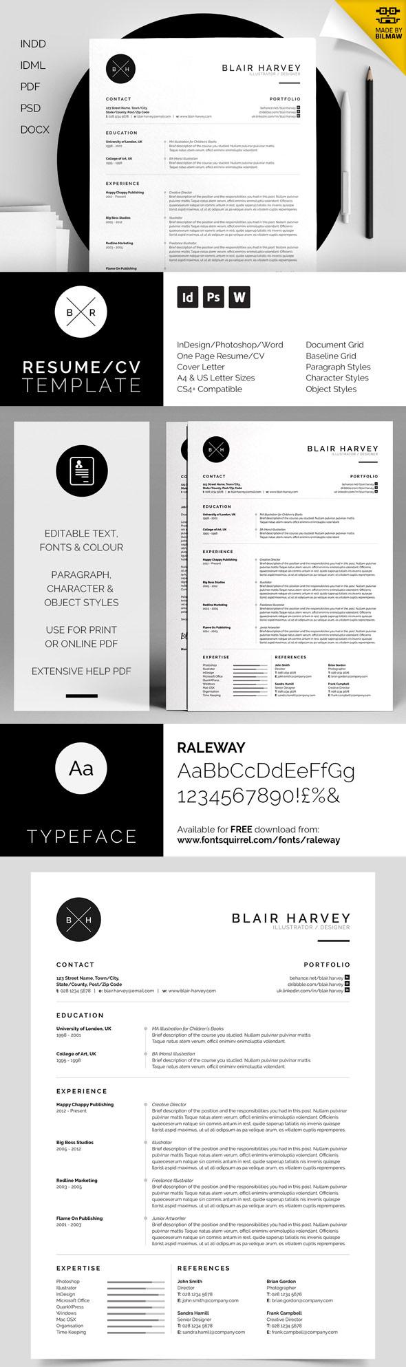 best minimal resume templates idevie 50 best minimal resume templates 21