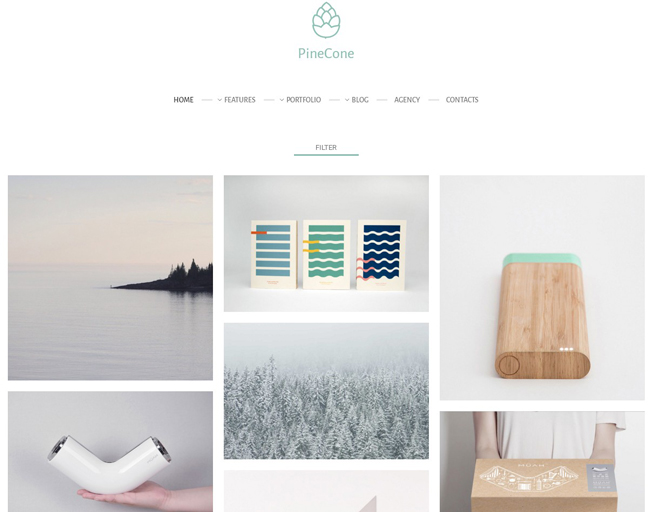 Free creative portfolio and blog wordpress theme idevie easiest and fastest way to build your beautiful website is import free demo content like i have in theme folder maxwellsz