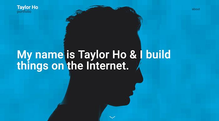 web developer portfolios taylor ho