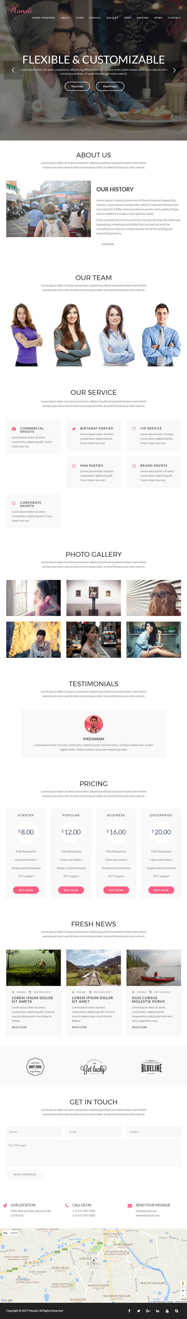Monali - Business, Agency, Corporate WordPress Theme