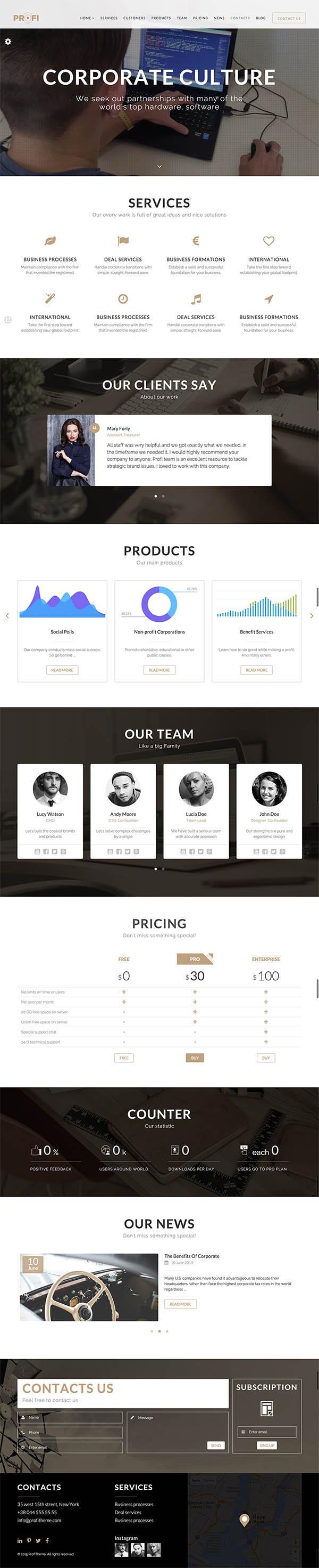 Profi : Multipurpose Corporate WordPress Theme