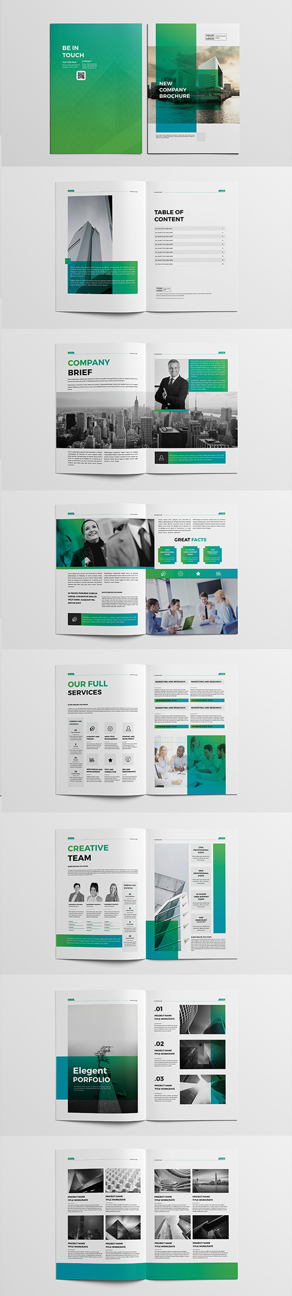 Professional Business Company Brochure