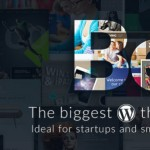 Need help choosing a WP Theme for a Startup or Small Business? Check these options