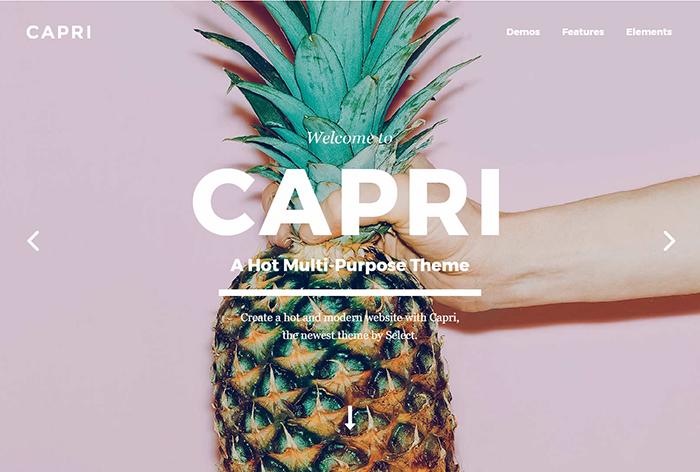 summer website themes capri