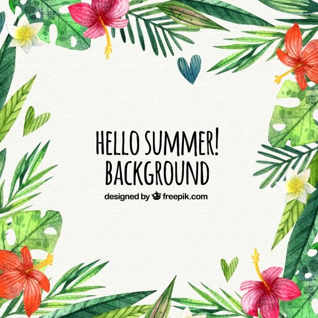 summer website themes background