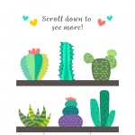 Free Download: Cute Cactus Patterns and Elements For Designers