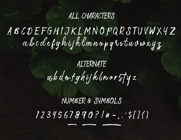 Storytella Free Font Letters
