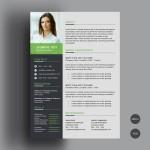Freebie – Clean CV/Resume Template