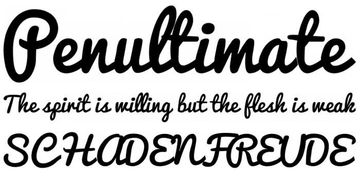 handwritten fonts pacifico